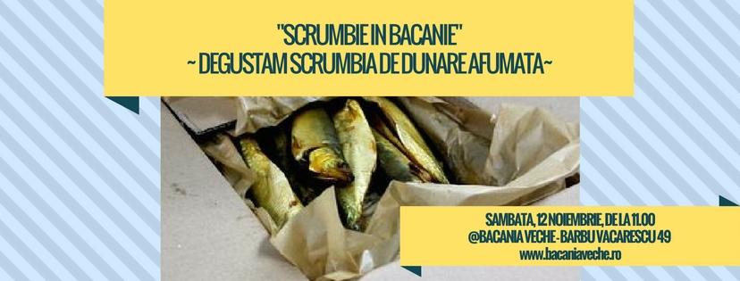 scrumbie-in-bacanie