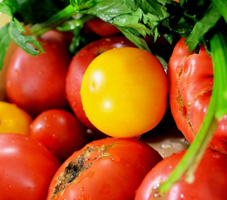 tomate Nasul Rosu